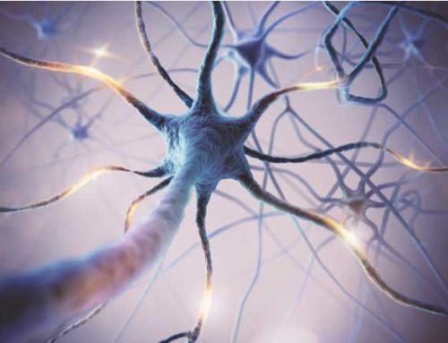 Covid-19 : Pourquoi vous devez prendre soin de votre nerf vague ?